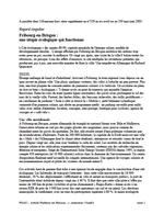 Fribourg-en-Brisgau : une utopie écologique qui fonctionne Vignette