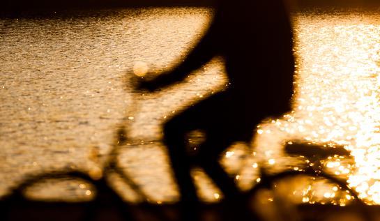 Ombre de cycliste à Copenhague